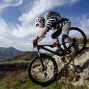 Elgin Valley Mountain Bike Tour