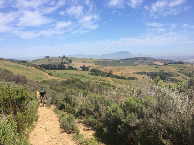 Simonsberg Mountain Bike Tour Stellenbosch