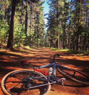 gravel bike tour stellenbosch