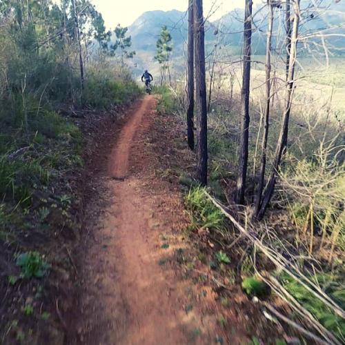 Wild Boar Trails Cape Vélo